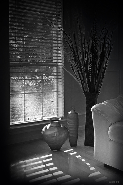 Greatroom Still Life_20090711_0095 B-W Art VI blog
