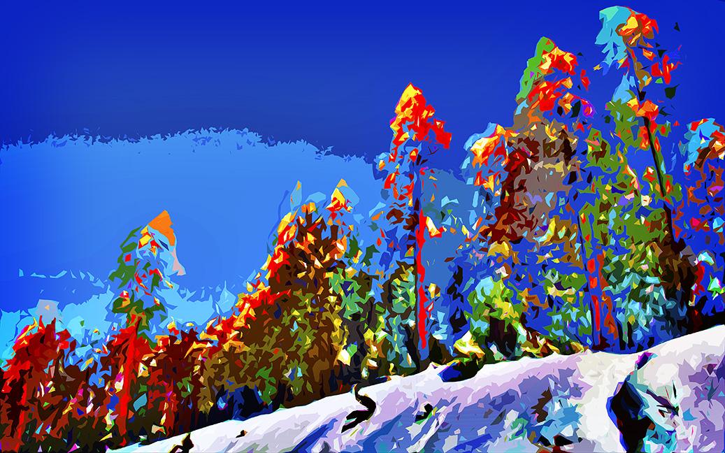December Snow_20111215_0797 Art II blog