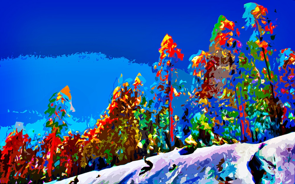December Snow_20111215_0797 Art II blog