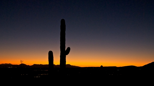 Sunset On Blackett's Ridge
