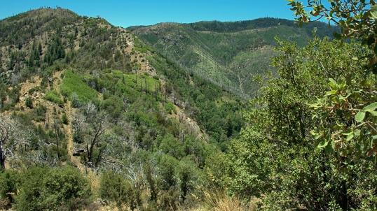 Oracle Ridge #1 SCVN Hike