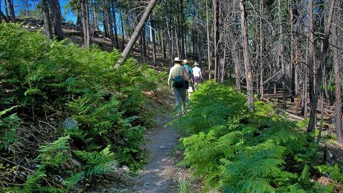 Palisades Trail June 18 2012