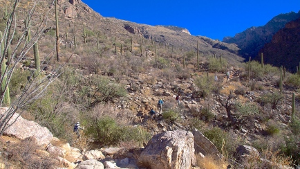 Pima Canyon Oct 2012