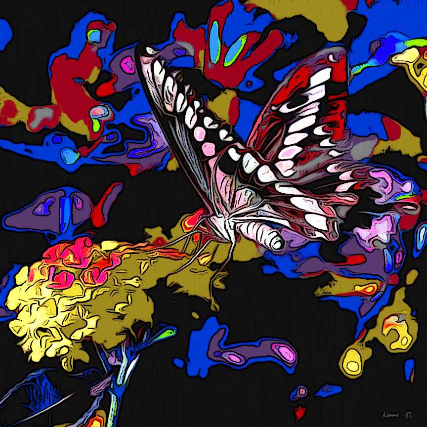 Pipevine Butterfly & Pool Area Links