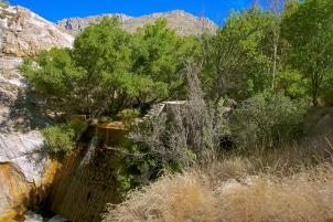 Sycamore Dam