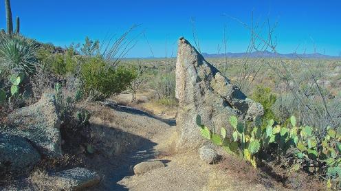 Baby Jesus Trail Nov 2012