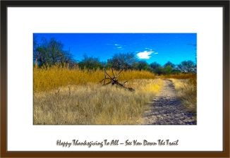 Fall Along The Tanque Verde Wash