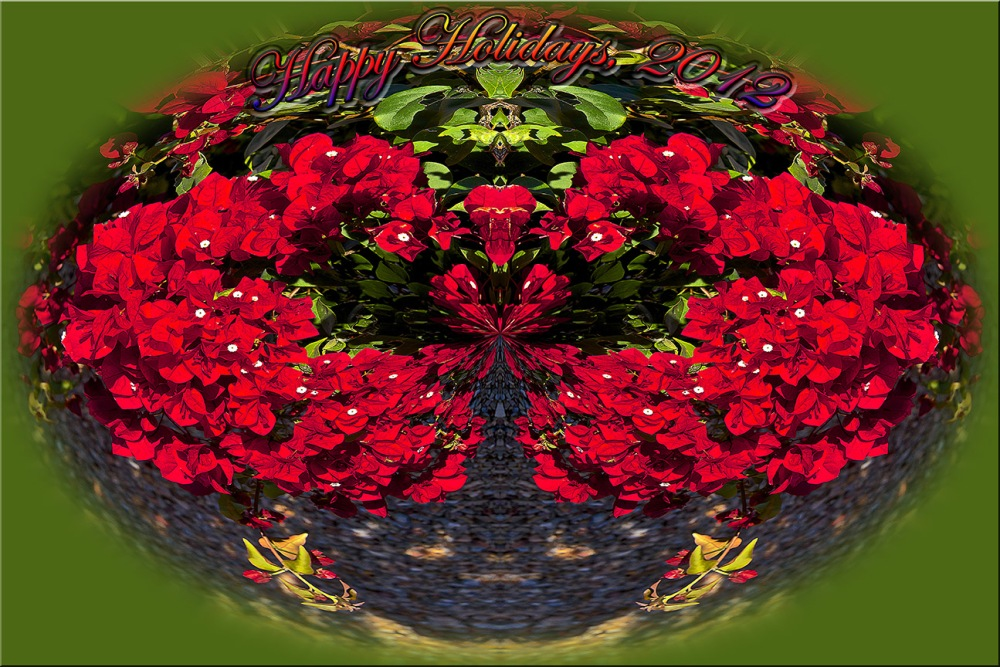 Happy Holidays 2012 blog