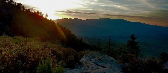 Italian Springs Trail_0010 Art blog