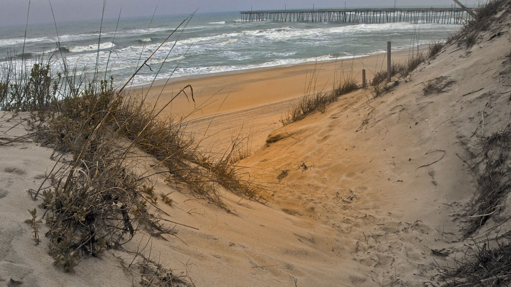 beach-web-1385