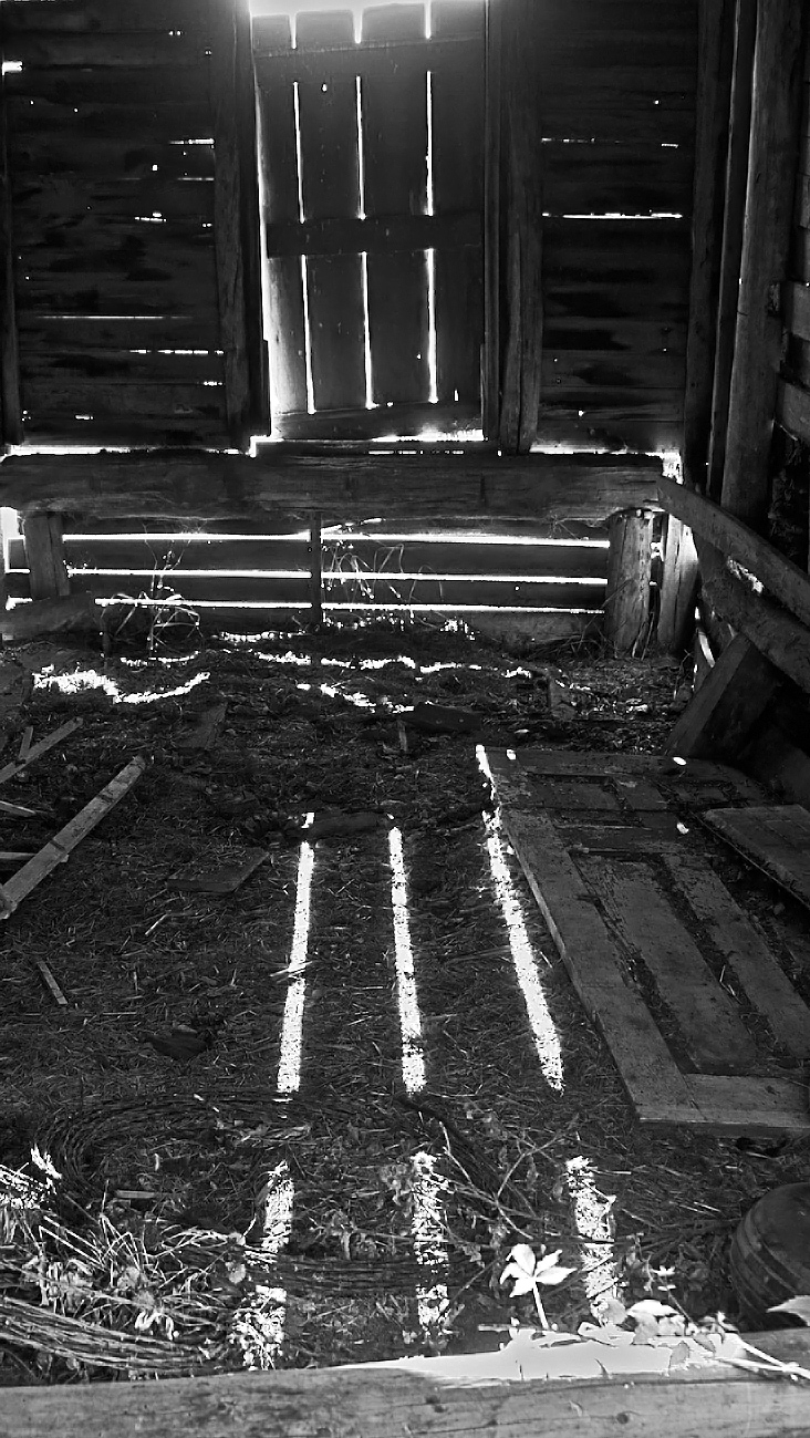 Fredric  3174 Light Thru The Cracks
