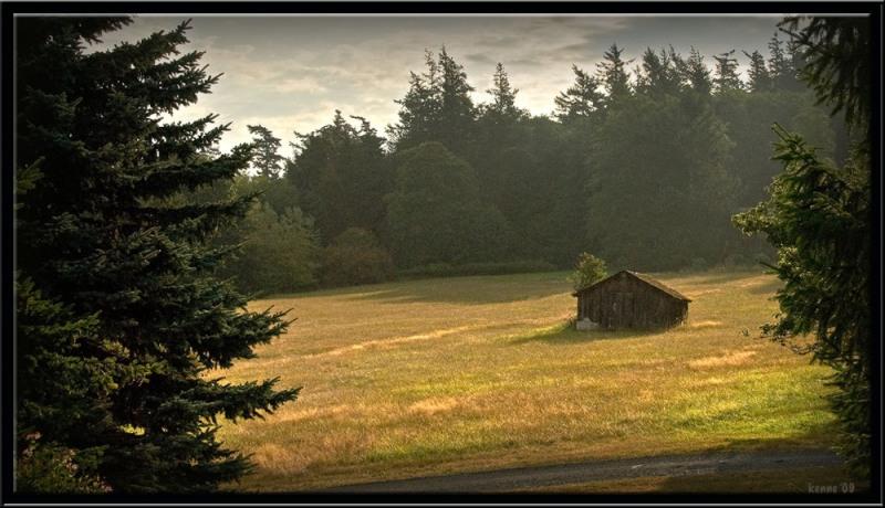 lummi-island-barn-in-the-field_20090829_0248copy-ii-blog