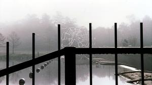 Lake Woodlands Spillway (2009)