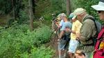 Butterfly Trail July2013