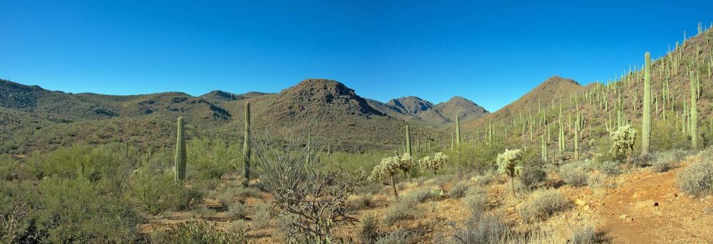 Starpass Trail 2012