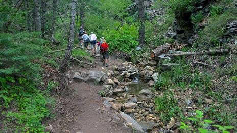 Aspen Loop, hiking, Mt. Lemmon