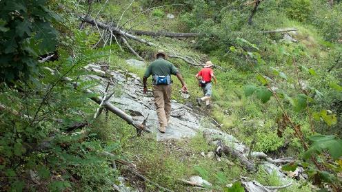 Crystal Trail Flowers-7859 blog