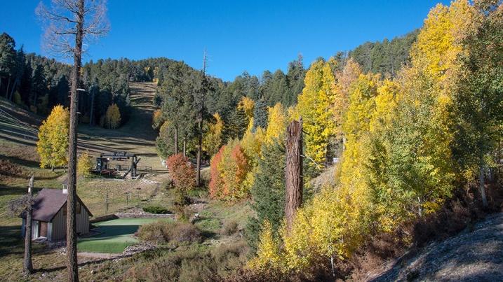 Aspen Draw Fall Colors-8366 blog