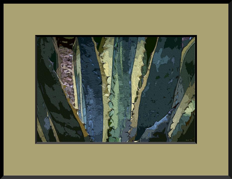 Variegated Agave-7774 art framed blog
