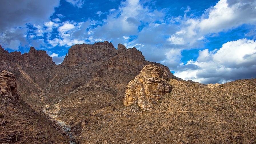 Bear Canyon Trail Above 7 Falls-8901 blog