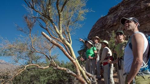 Blacket's Ridge Nov 1st 2013-8630 blog
