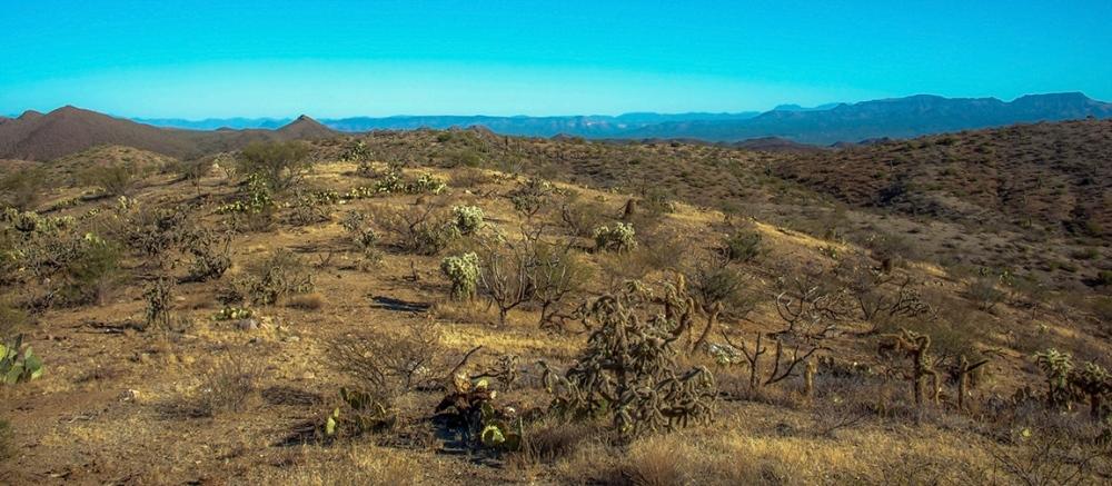 Hiking Rolling Hills-8854 blog