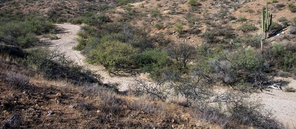 Hiking Rolling Hills-8857 blog
