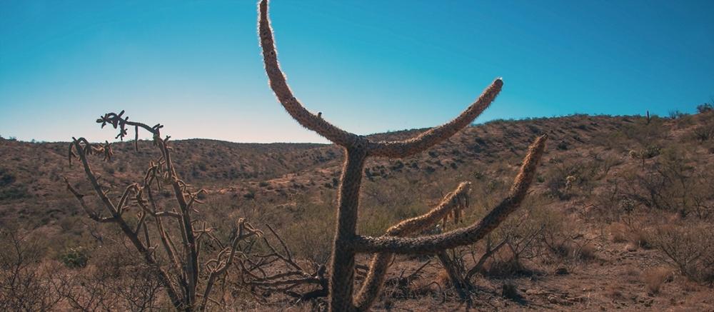 Hiking Rolling Hills-8858 blog