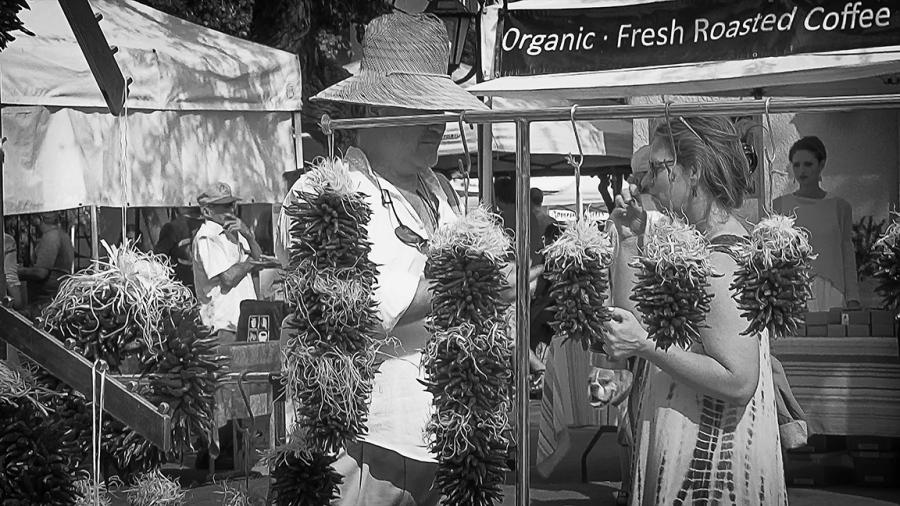 Misc Images-8830 Farmers Market blog