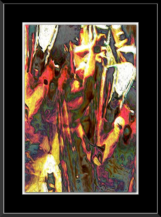 Nature Made framed blog