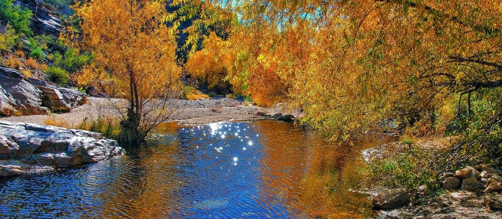 Sabino Canyon Colors Des 2013-9186_HDR blog
