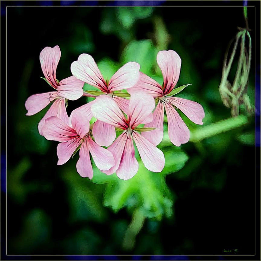 White Pink & Green blog framed