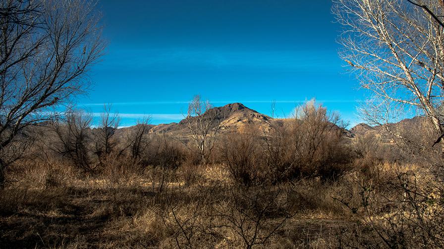 deAnza Trail 2014-9521 blog