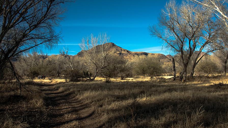 deAnza Trail 2014-9526 blog