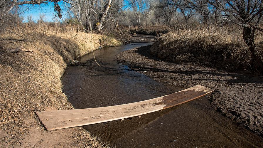 deAnza Trail 2014-9528 blog