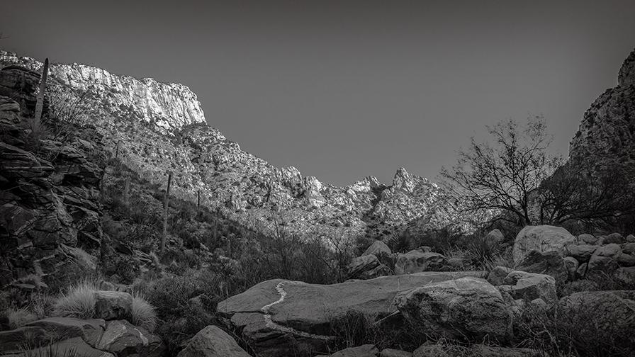 Pima Canyon-9465-2 blog