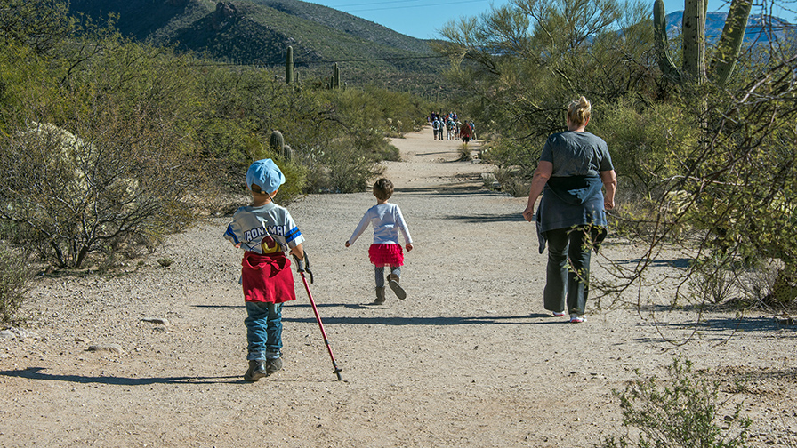 Sabino Canyon-9431 blog