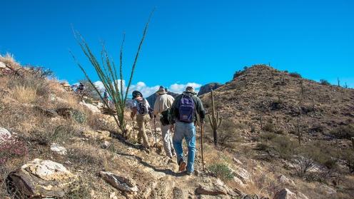 Blackett's Ridge-9886 blog