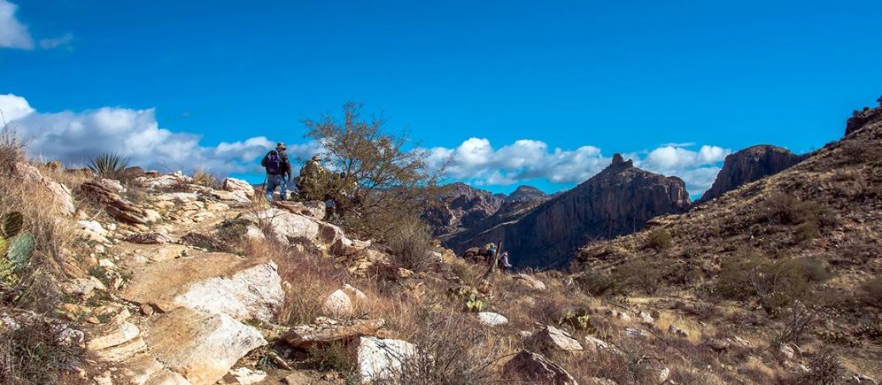Blackett's Ridge-9888 blog