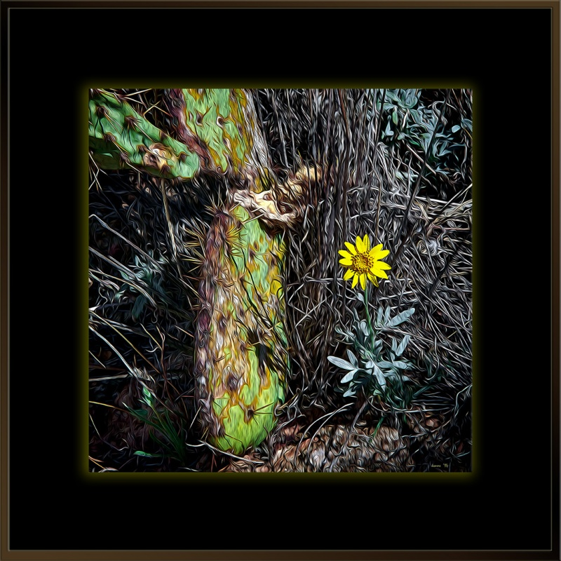 Blackett's Ridge-9910 spring art blog