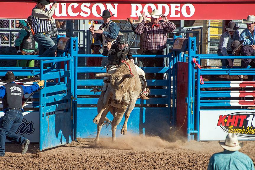 Bull Riding-0334 blog