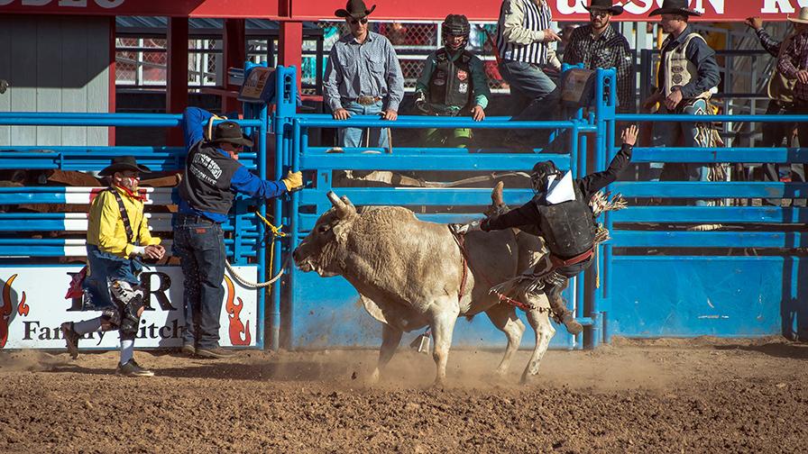 Bull Riding-0338 blog