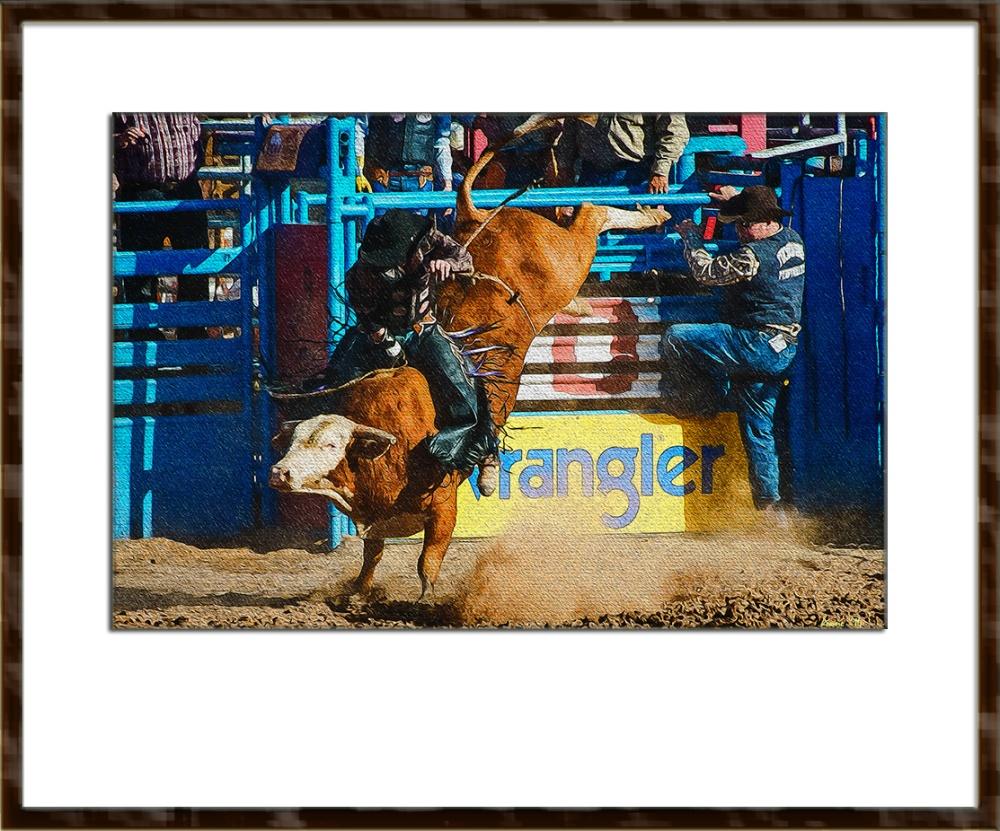 Bull Riding-0380 art_edit blog