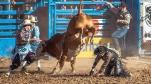 Bull Riding-0388 blog