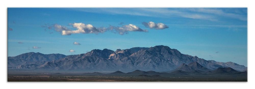Desert Museum-9764 blog