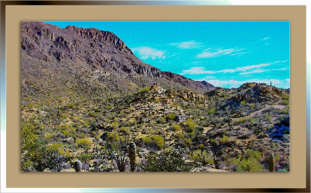 Desert Museum-9768_art blog
