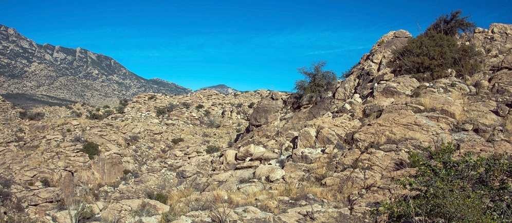 Hidden Paster Trail 2014-0402 blog