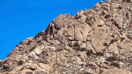 Hidden Paster Trail 2014-0410 blog