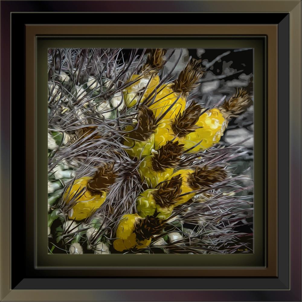 Saguzro Cactus January 27, 2014-9648-2_art blog