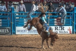 Tucson Rodeo 2014-0113blog